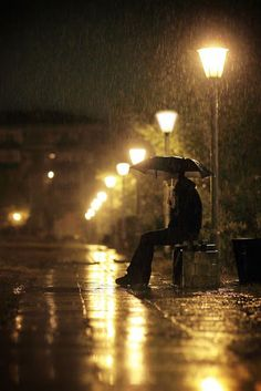 rainy nights                                                       …
