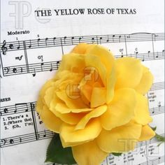 Yellow Rose of Texas - The Yellow Rose of Texas – I've always loved that so. Yellow Rose of Texas Earn Money From Home, Way To Make Money, How To Make, Polymer Clay Sculptures, Sculpture Clay, Texas Canvas, Websites Like Etsy, Loving Texas, Texas Pride