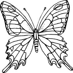 Challenging Coloring Page Of Butterfly For Older Kids free Join