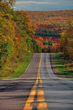 Oh.. I feel like i would want to drive for hours when the road looks like this. Beautiful autumn