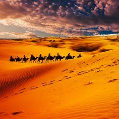 "500px / Photo ""Desert"""