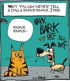 The cat looks rather put out at the pup's craziness - rather like mine would look, LOL!