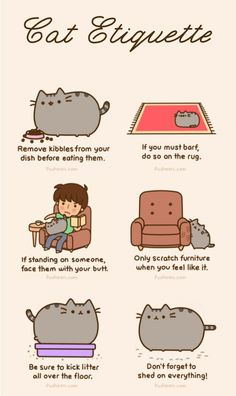 Cat etiquette - it's like they know my cats personally