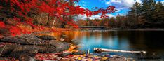 Autumn Lake Facebook Cover
