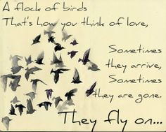 O-fly on. maybe one day I can fly with you again,maybe you're gone for good but love will arrive again, so fly on and be happy. I love you always.