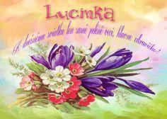 Lucinka   K dnešnému sviatku len samé pekné veci, hlavne zdravíčko!