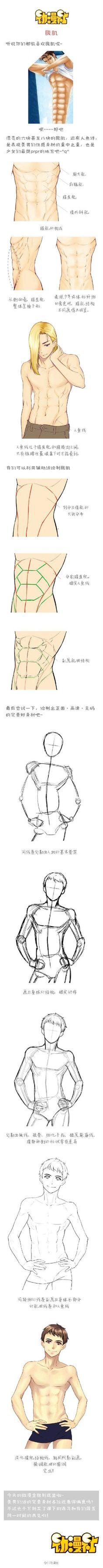 #绘画学习# 详细全面的男性肌肉绘制教程...