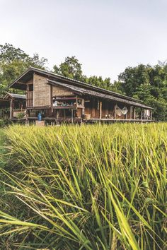 A lot of these old houses from Vietnam, Thailand and other Asian countries seem to have interesting solutions to giving their living spaces privacy and sun protection through the use of screens made of natural materials Bamboo Architecture, Tropical Architecture, Vernacular Architecture, Architecture Design, Thai House, Bamboo House, Natural Building, Forest House, Tropical Houses
