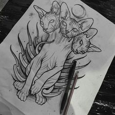 Ideas for tattoo cat traditional kitty idées pour chat tatouage chat traditionnel Tattoo Sketches, Tattoo Drawings, Art Sketches, Kunst Tattoos, Body Art Tattoos, Arabic Tattoos, Sleeve Tattoos, Tattoo Gato, Sphynx Cat Tattoo