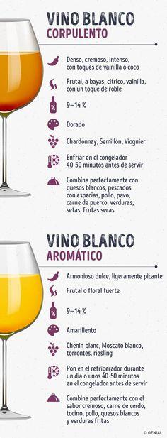 Esta guía de vinos hará de ti un verdadero especialista #Infographic #Infografía