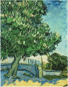 ~Chestnut Tree in Blossom by Vincent van Gogh~ Auvers-sur-Oise, France: May 1890
