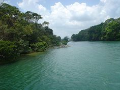 Canal de Panamá, Colon, Panama by lyng883, via Flickr