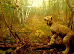 Lynx Diorama, via Flickr.