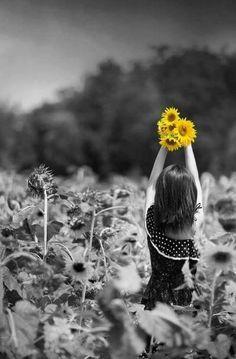 Color splash #yellow #photography #sunflower