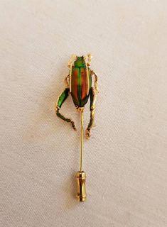 Sieh dir dieses Produkt an in meinem Etsy-Shop https://www.etsy.com/de/listing/591651481/kaferbrosche-bug-pin-genuine-bug-gold