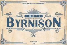 Iorek Byrnison (free POSTER vector) by inumocca on Creative Market