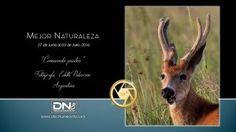 Mejor Naturaleza del 27 de Junio al 03 de Julio/2016 - de Edith Polverini