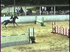 This is a video of my father, LP Tate's, last horse show class at Blowing Rock Charity Horse Show in My father was 64 years old, and his horse was 20 y. Horse Videos, Blowing Rock, Jethro, 20 Years Old, Show Horses, Lp, Father, The Incredibles, Animals