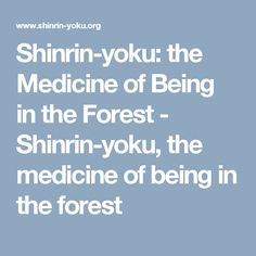 Shinrin-yoku: the Medicine of Being in the Forest - Shinrin-yoku, the medicine of being in the forest