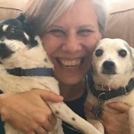 Homemade Dog Flea Shampoo Recipe + Step by Step Flea Mitagation Lip Scrubs, Facial Scrubs, Facial Masks, Puppy Shampoo, Dog Ice Cream, Medication For Dogs, Frozen Dog, Sweet Potatoes For Dogs, Dog Nails