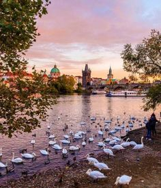 A great spot in Prague is just north of Charles Bridge on the...
