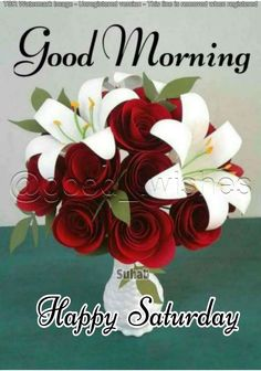 Good Morning Saturday Images, Happy Saturday Quotes, Good Morning Friends Images, Saturday Greetings, Good Morning Beautiful Pictures, Good Morning Cards, Good Morning Prayer, Good Morning World, Morning Blessings