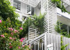 This house in Vietnam has been covered in plants which clamber over its slatted timber cladding