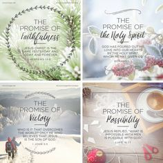 Show your family and friends that you love Jesus. Share your passion and faith. Faith Scripture, Jesus Faith, Faith Prayer, Scripture Quotes, Faith Quotes, Bible Verses, Scriptures, Christmas Quotes, Christmas Love