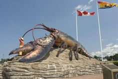 The town of Shediac is known as The Lobster Capital of the world and has some of the finest and warmest saltwater beaches in Eastern Canada. Voyage Canada, New Brunswick Canada, East Coast Travel, Thing 1, Roadside Attractions, Tropical Beaches, Weird Creatures, Canada Travel, Rest