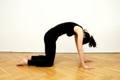 Rückenübungen Zuhause - fit bleiben in den eigenen vier Wänden | Rücken | Magazin | Platinnetz
