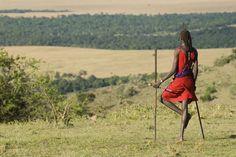 Maasai Warrior #Serengeti #Tanzania