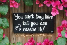 "Wood sign in color of your choice,  ""You can't buy love but you can rescue it!"" by CountAllThingsJoy"