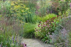 Perennial Garden Borders In Goede Aarde-coneflower (foto: Eric Spruit) Prairie Planting, Prairie Garden, Meadow Garden, Love Garden, Dream Garden, Garden Pictures, Garden Landscape Design, Garden Borders, Natural Garden