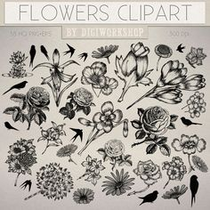 Hand Drawn #Flowers Clip Art #Clipart with hand drawn images of flowers This…