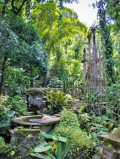 Structure with a roof shaped like a whale and the Bamboo Castle, Las Pozas, Mexico. Photo by Rosa Menkman