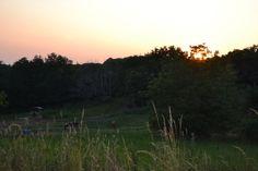 Sunset at Du Passe-Temps