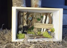 John Muir Shadowbox Gift,  Small Nature Collage, $24