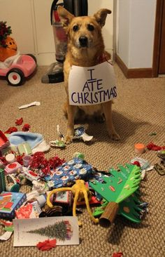 BAHAHAHAHA!! I ate Christmas! Love that headline for his sign.... He left Halloween alone though, that's still chillin in the background. Maybe he's just afraid of Santa. lol I found this more hilarious than I think I should have.
