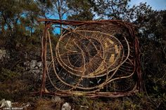 A Year in a French Forest: Sculpture 13