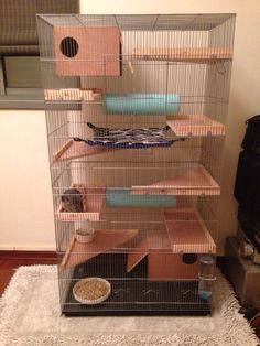 Very cool chinchilla cage. I love the layout of the wooden ledges inside. http://amzn.to/2k2HTMQ
