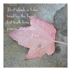 """""""That which is false troubles the heart, but truth brings joyous tranquility."""" ~Rumi"""