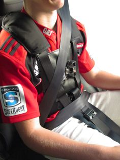 adapted adult seat belt harness