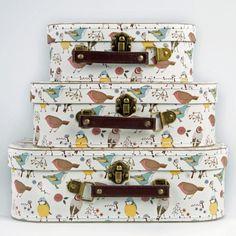 british bird cases copy