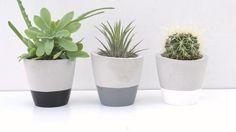 Set of  three /Concrete planters / Gray planters / by InGaConcrete