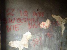 Niskie IQ - graffiti Wrocław #IQ #graffiti #Wrocław