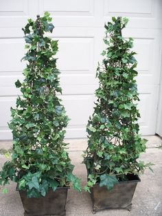 DIY topiary for the front door entry