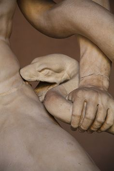Laocoon, detail. - Vatican museums - by Athenodoros of Rhodes, Polydorus of Rhodes, Agesandro