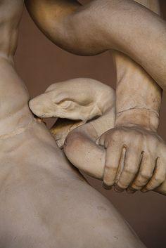 Detail of Laocoonte e i suoi due figli lottano coi serpenti.