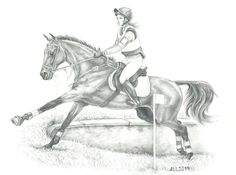 А4, простые карандаши #pencil #drawing #horse