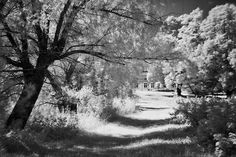 Six infrared photo - Mika Suutari Photography